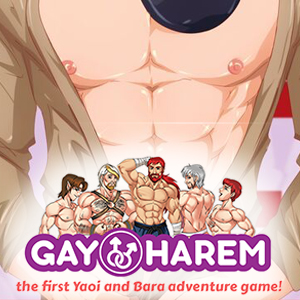 Gay Harem jeu porno avis